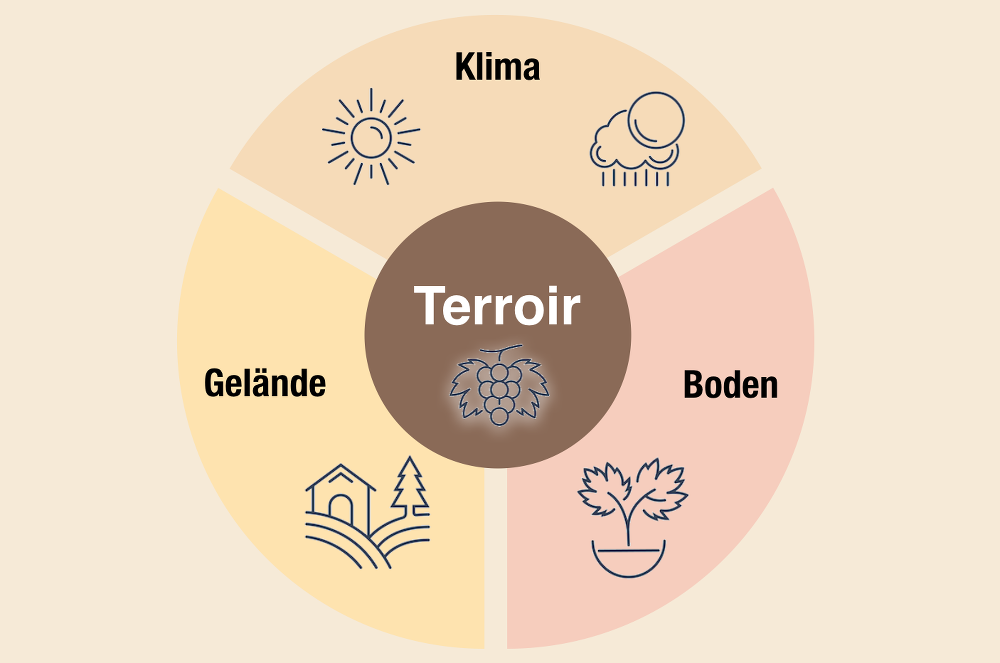 Terroir-Definition-Klima-Gelaende-Boden